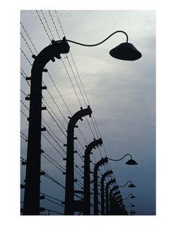 HOLOCAUST POST - 27.8.08