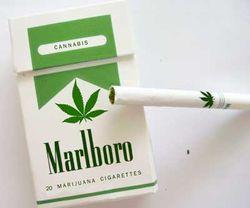 Marijuana-marlboros
