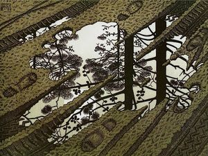 Escher, m c puddle 1952