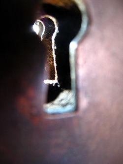 Keyhole_by_MizPersnicket